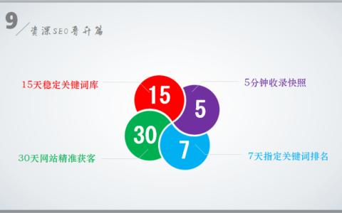 SEO2.0来了:专门针对企业SEO获客,发售价>2800元/人