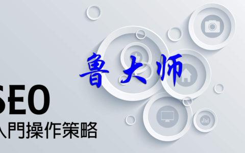 成都鲁大师SEO:教您怎么看日志优化网站
