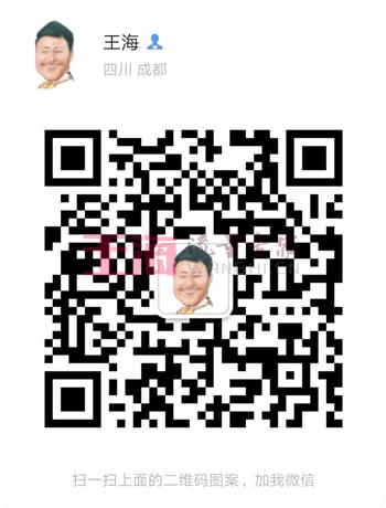 seo诊断报告:成都seo专家为您服务