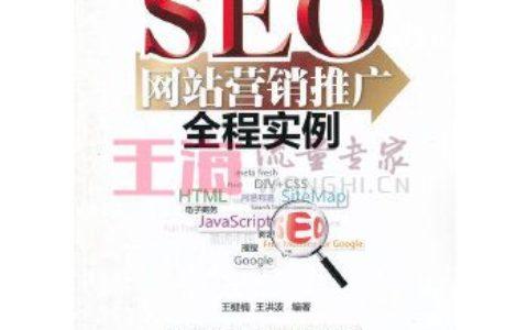 《SEO网站营销推广全程实例》_王楗楠,王洪波写了什么书?