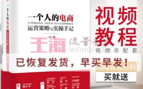 《一个人的电商运营策略与实操手记双色版许晓辉电商运营书网店互联网直通车seo推广优化书籍》_seo入门书籍