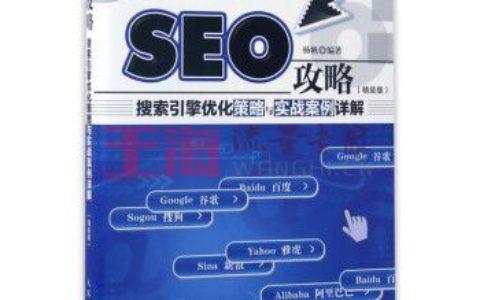 《SEO攻略(搜索引擎优化策略与实战案例详解精装版)(精)》_杨帆