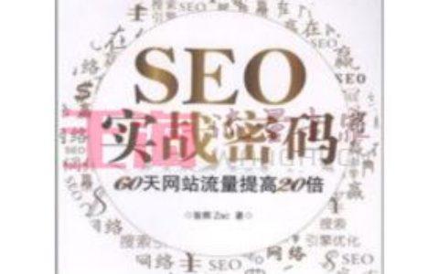 《SEO实战密码:60天网站流量提高20倍》_seo入门书籍