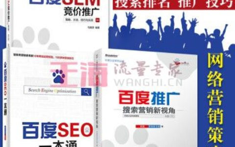 《seo百度推广SEM竞价策略方法技巧与实战+百度推广搜索营销新视角+百度SEO一本通套装3册》_