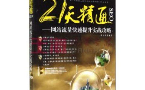 《21天精通SEO_网站流量快速提升实战攻略》_雨辰资讯哪些书畅销?