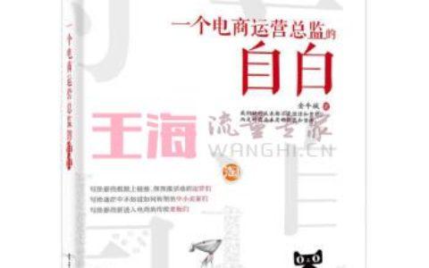 《一个电商运营总监的自白金牛城团队SEO营销规划书籍推广数据深度分析网店搜索排名优化实》_seo入门书籍