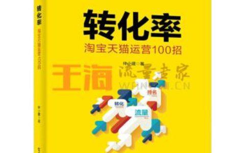 《转化率运营100招仲小建电商运营书籍提高流量转化率方法技巧大全seo关》_seo入门书籍