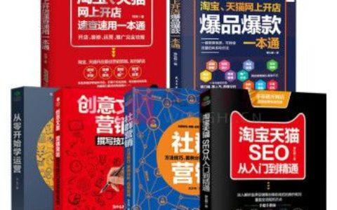 《正品电商运营全6本套装淘宝天猫开店电子商务书籍网络营销seo淘宝运营新手学习》_