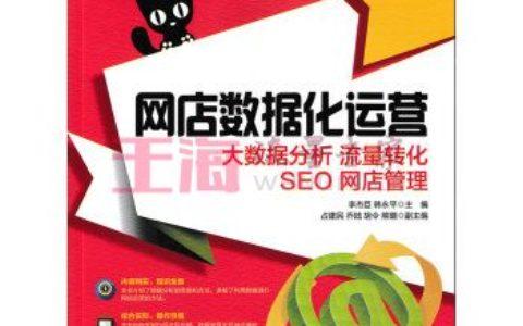 《FR网店数据化运营大数据分析流量转化SEO网店管理》_seo入门书籍