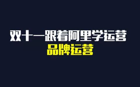 双十一皆大欢喜之后 | 盘点双十一背后的品牌运营_陈维贤