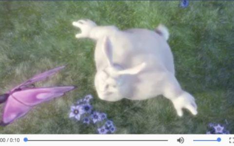 这几年,我在video上踩的坑入门基础知识_video菜鸟教程下载